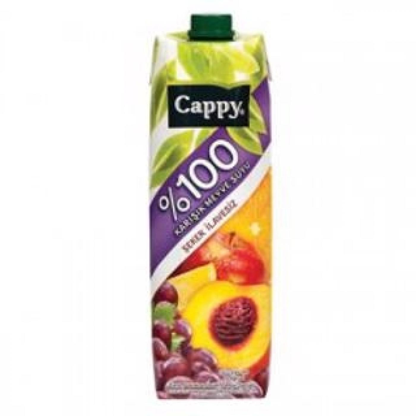 CAPPY 1LT %100 KARIŞIK MEYVE